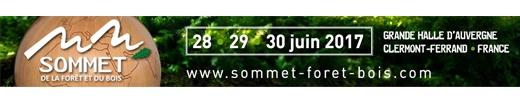 sommet-de-la-foret-et-du-bois-520-x-100