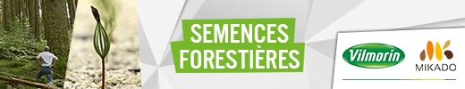 2012 Web banner Vilmorin-Mikado Guide Forestier