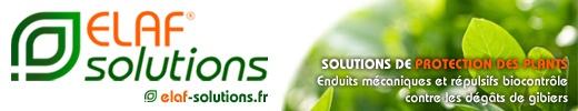 Elaf-solutions-520-x-100