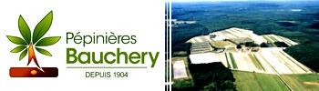 Pepinieres-Bauchery-350-X-1