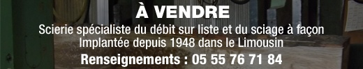 Scierie-à-vendre-520-x-100